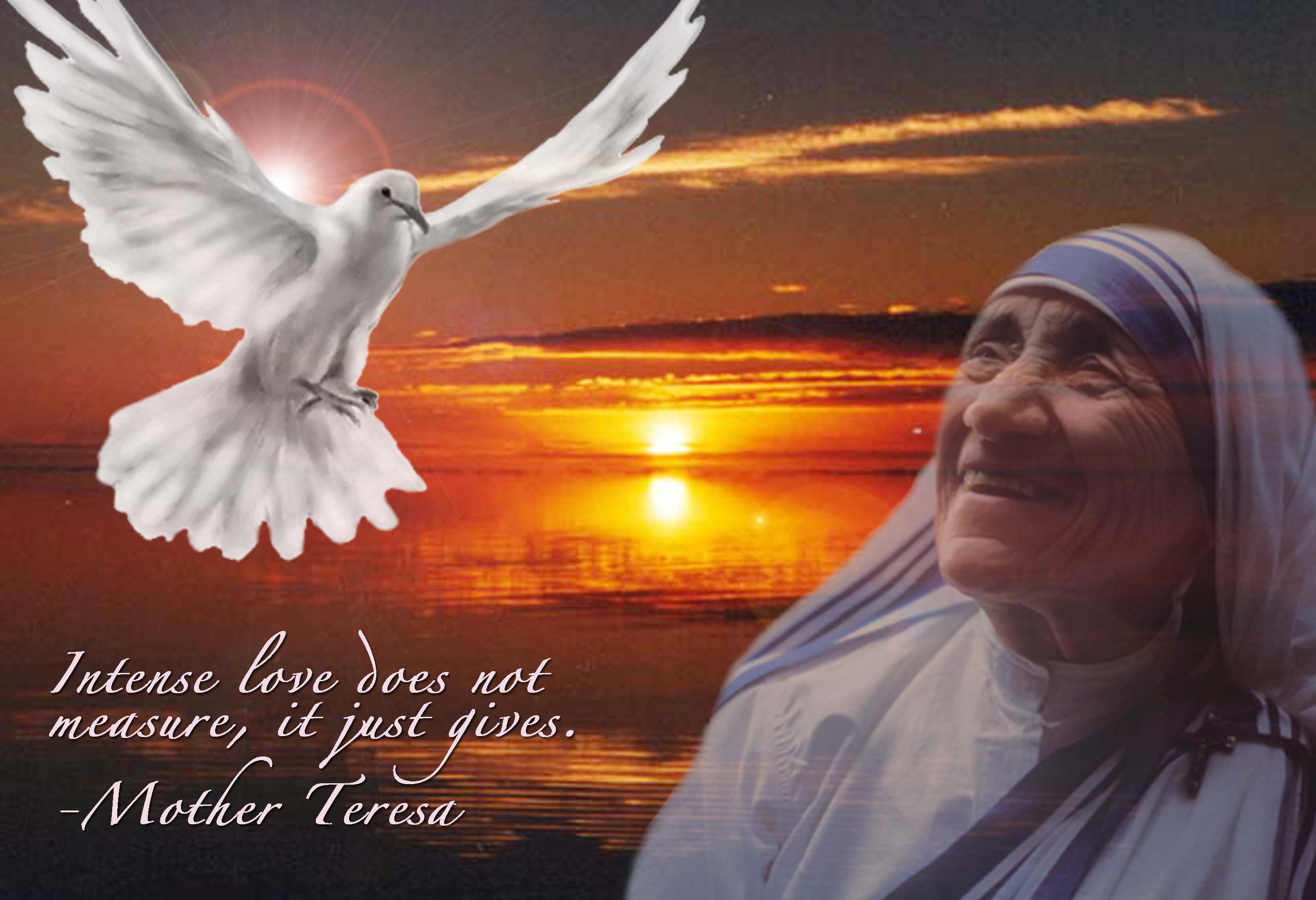 Mother Teresa Quotes Life The Life And Wisdom Of Mother Teresa Of Calcutta.